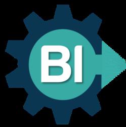 Project BI